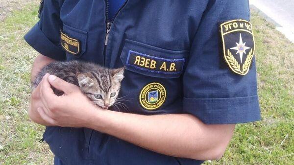 Сотрудник МЧС России приютил у себя спасённого котенка