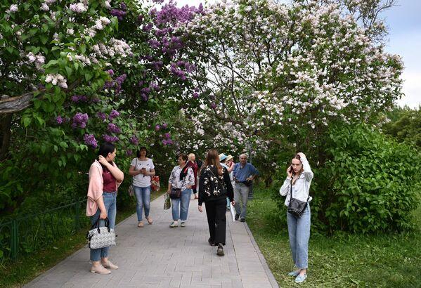 Парк Сиреневый сад в Москве