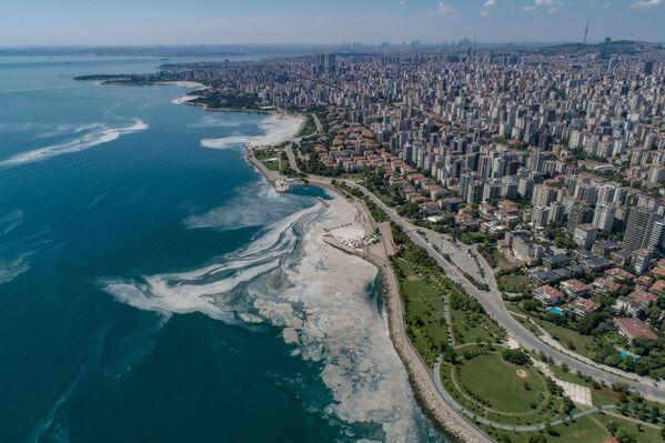 Мраморное море покрытое слизью в районе Стамбула