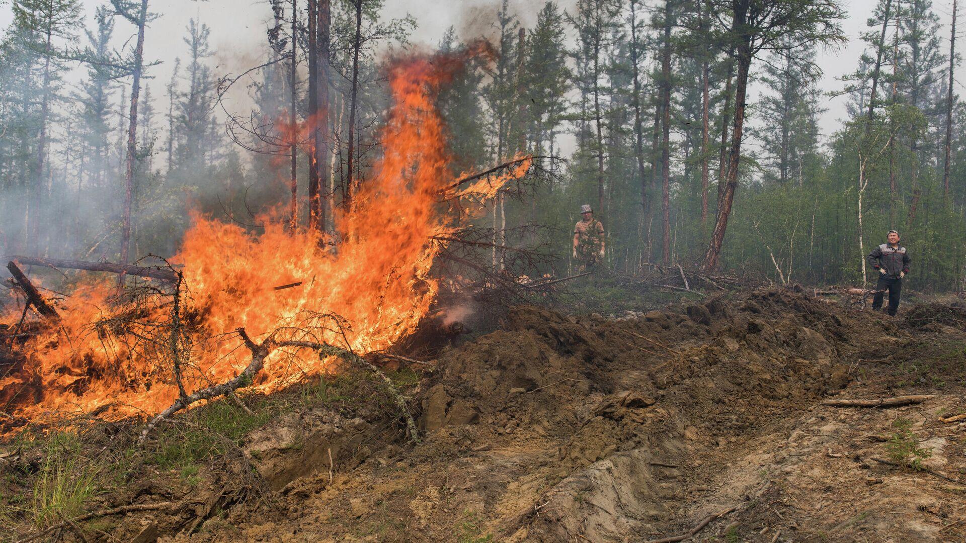 Лесной пожар в Якутии - РИА Новости, 1920, 19.07.2021