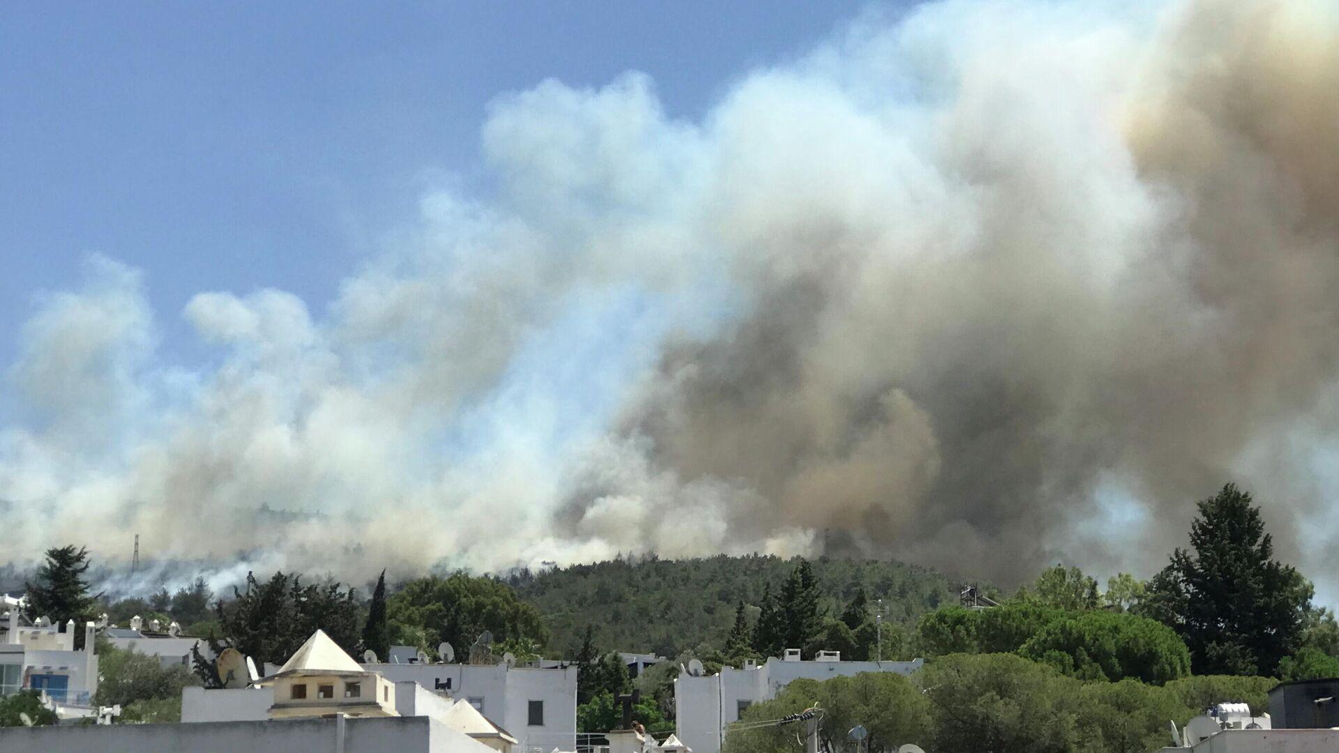 Дым от лесного пожара поднимается возле жилого района на курорте Бодрум, Турция - РИА Новости, 1920, 02.08.2021