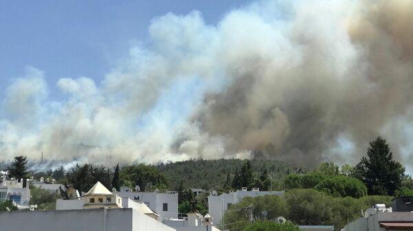 Дым от лесного пожара поднимается возле жилого района на курорте Бодрум, Турция