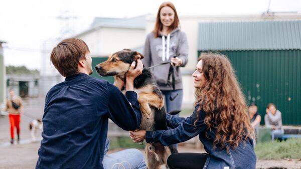 Фестиваль Собаки, которые любят, рассказывающий о волонтерстве в приюте