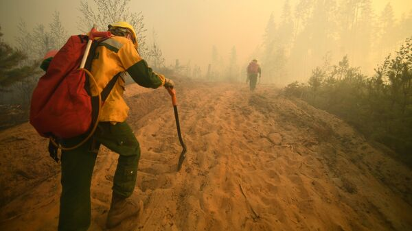 Тушение лесных пожаров в Марий Эл