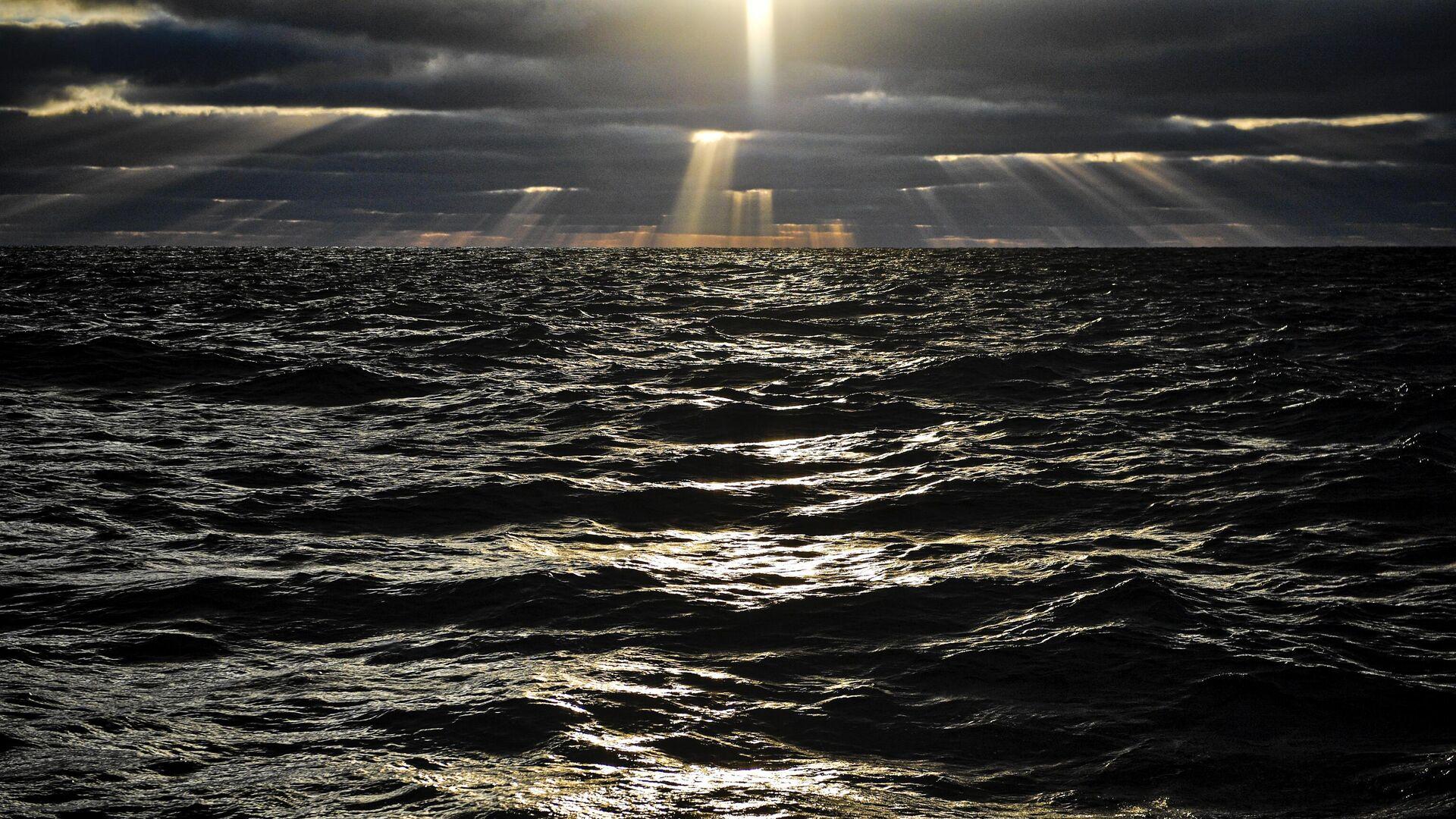 Ученые назвали самое загрязненное российское арктическое море
