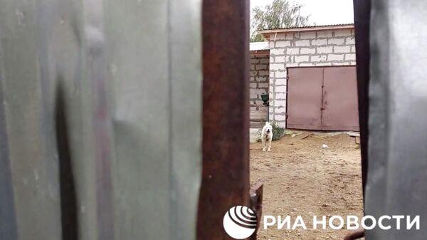 Раскрыты новые подробности похищения девушки в Нижнем Новгороде