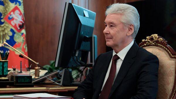 Мэр Москвы Сергей Собянин во время встречи с президентом РФ Владимиром Путиным в Кремле