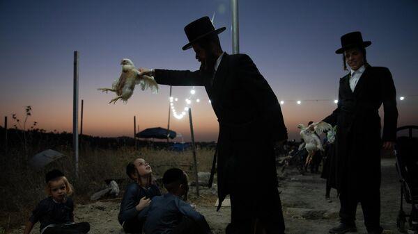 Ультраортодоксальный еврей держит курицу в рамках ритуала капарот в Бейт-Шемеше, Израиль