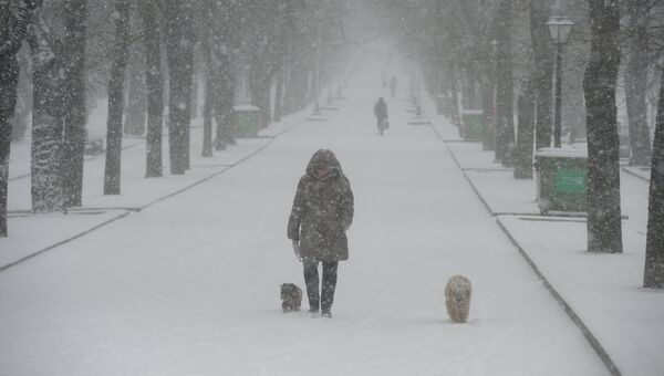 Снегопад. Архивное фото.