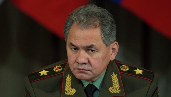 Министр обороны РФ Сергей Шойгу, архивное фото