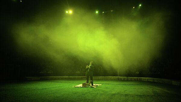 Цирковое представление. Архивное фото
