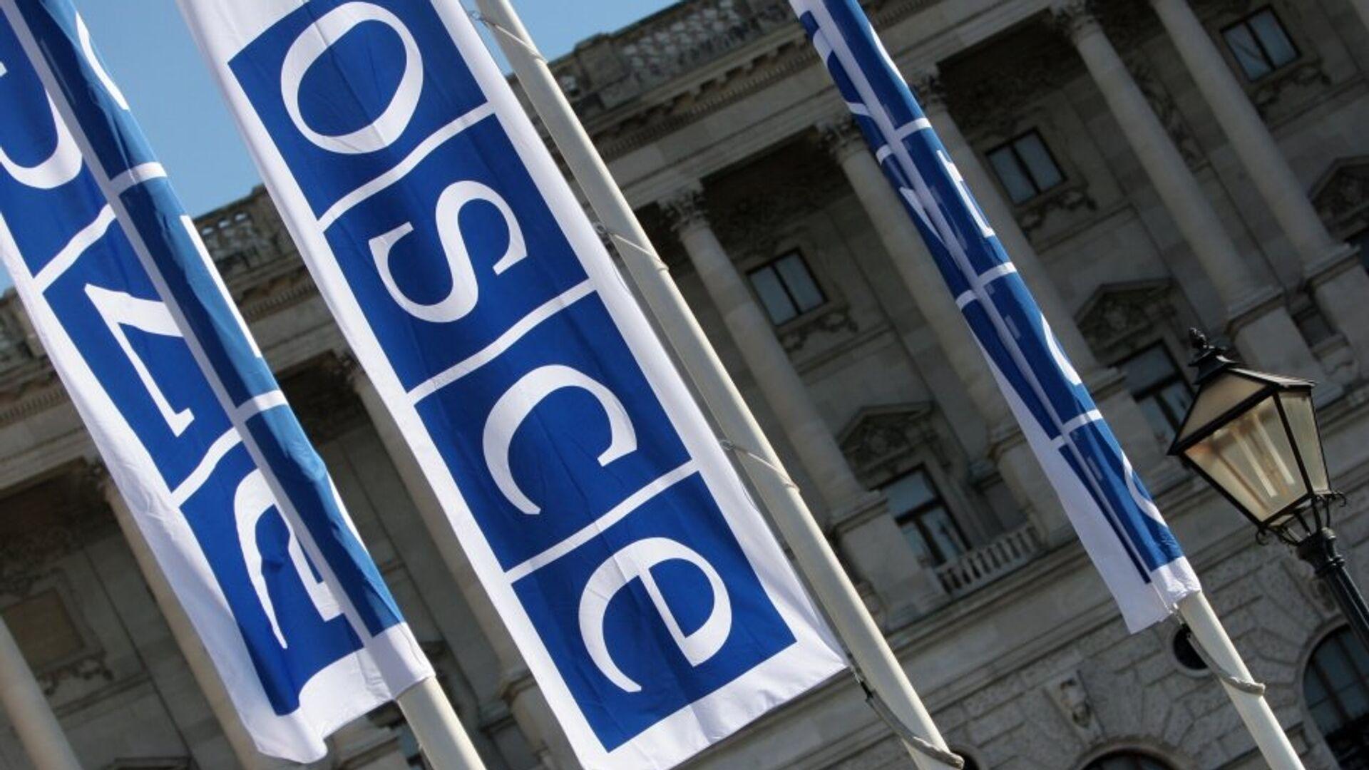 Флаги с логотипом ОБСЕ в Вене - РИА Новости, 1920, 07.01.2021