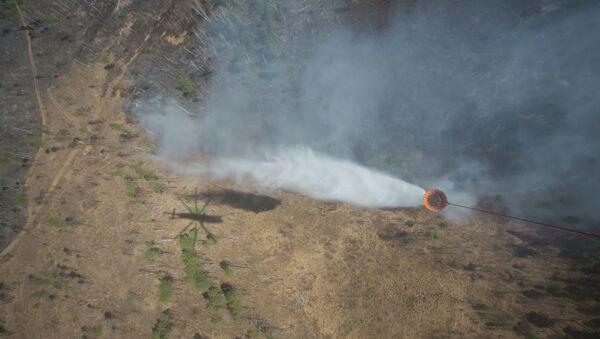 Тушение лесных пожаров на Дальнем Востоке. Архивное фото