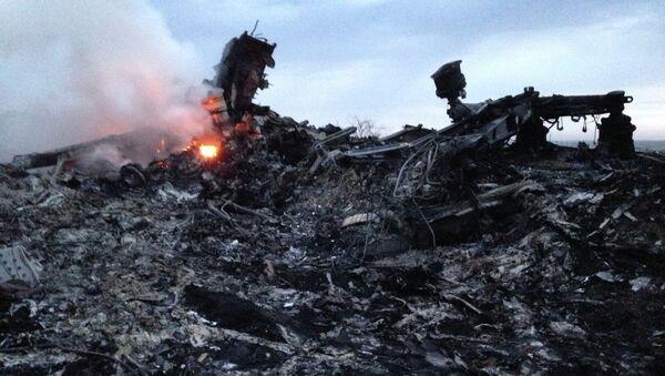 На месте крушения Boeing 777 компании Malaysia Airlines в районе села Грабово