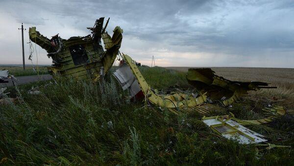На месте крушения малазийского самолета Boeing 777 в районе города Шахтерск Донецкой области.