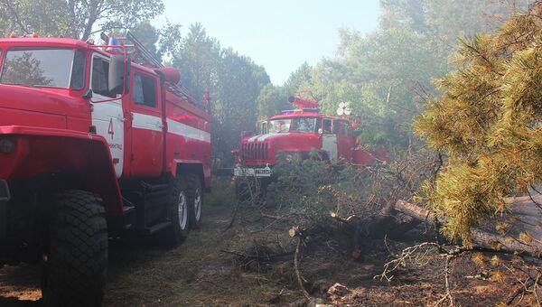 Пожар на Куршской косе в Калининграде