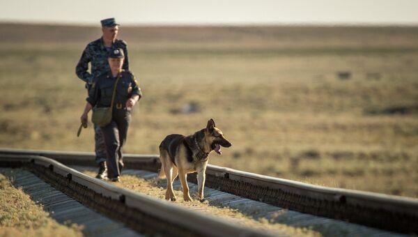 Полиция Казахстана с собакой. Архивное фото