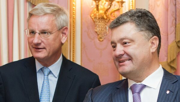 Министр иностранных дел Швеции Карл Бильдт во время встречи в Киеве. Архивное фото