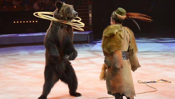 Дрессированные медведи в новом шоу Цирка братьев Запашных в Москве