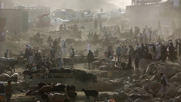 Торговцы скотом в Кабуле перед праздником Курбан-байрам, Афганистан