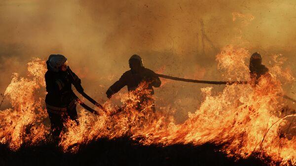 Сотрудники МЧС России тушат горящую траву возле поселка Панковка
