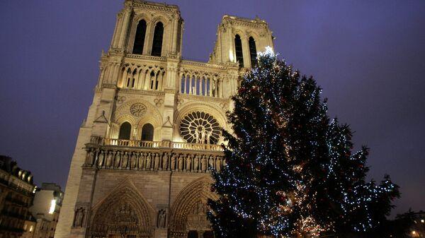 Рождественская елка перед собором Нотр-Дам в Париже. Архивное фото