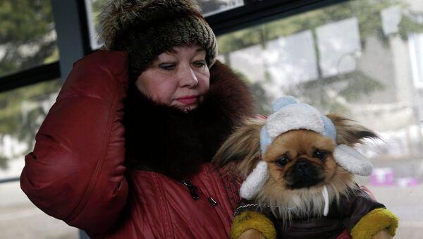 Женщина с собакой в автобусе перед отъездом из Дебальцево