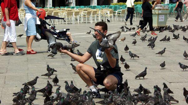 Туристы и голуби на площади Сан-Марко в Венеции