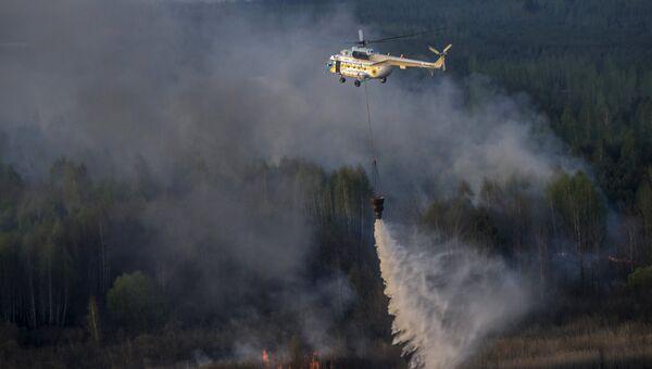 Тушение лесного пожара на севере Украины