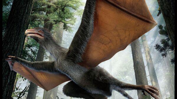 Так художник представил себе странное крыло, динозавра-бэтмена