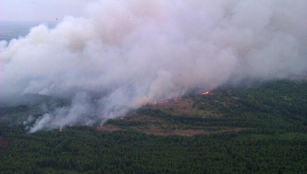 Вид из вертолета на пожар в Чернобыльской пуще. Киевская область, Украина