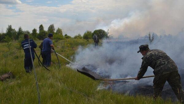 Пожар в Чернобыльской пуще. Киевская область, Украина. Архивное фото