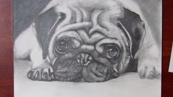 Нарисуй себе собаку