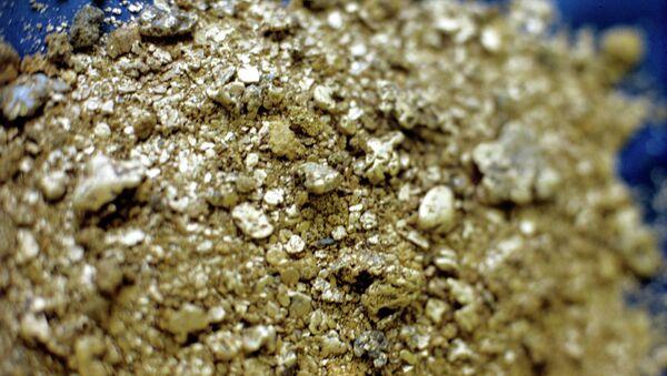 Самородное золото. Архивное фото