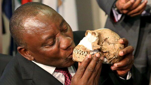 Вице-президент Южной Африки Кирилл Рамафоза целует череп недавно обнаруженного древнего вида человека Homo naledi