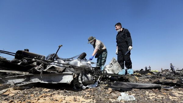 Следователи СК РФ на месте крушения самолета Когалымавиа, выполнявшего рейс из Шарм-эль-Шейха в Санкт-Петербург. 1 ноября 2015