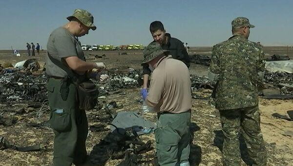 Сотрудники МЧС РФ брали пробы с обломков для следствия по крушению А321