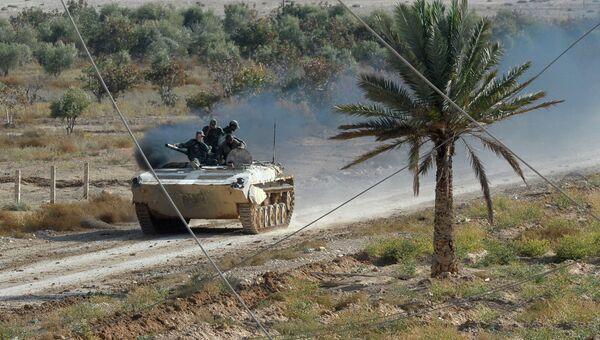 Солдаты Сирийской Арабской Армии на боевых позициях в 20 километрах от города Пальмира. Архивное фото