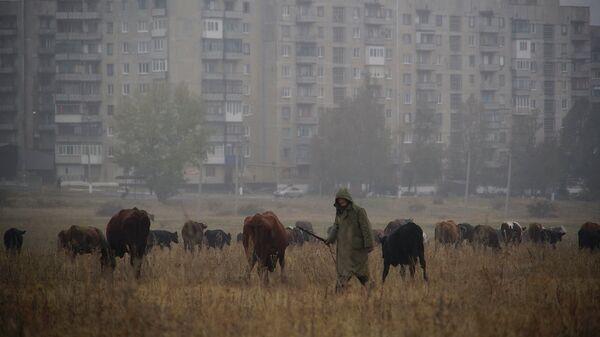 Ситуация в Енакиево. Архивное фото