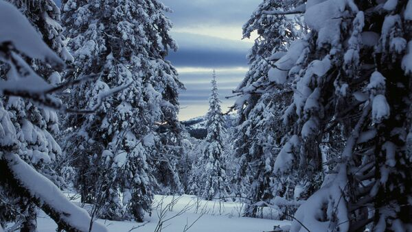 Горы, Урал. Архивное фото