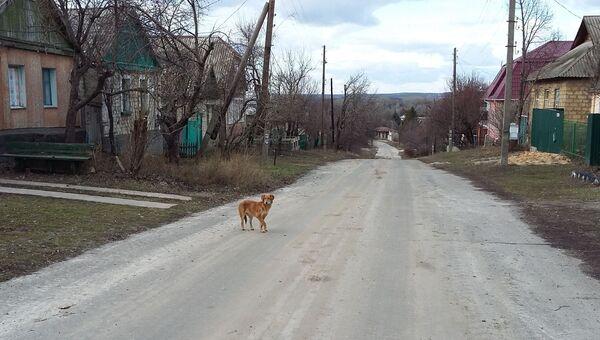 Деревня Веселая Гора в Донбассе