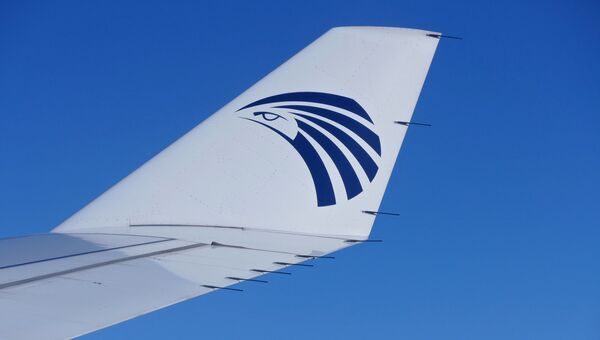 Логотип компании EgyptAir на крыле самолета