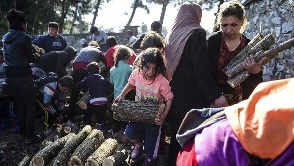 Мигранты и беженцы собирают дрова в палаточном лагере недалеко от села Идомени, Греция. Архивное фото