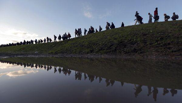 Мигранты на окраине Брежице, Словения. 20 октября 2015
