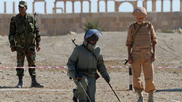 Сирийский сапер в ходе поиска и обезвреживания взрывных устройств. Архивное фото