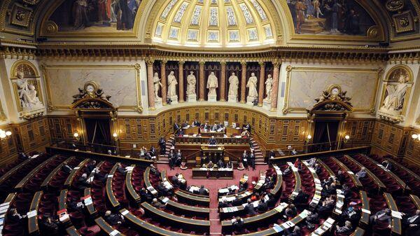 Парламент Франции. Архивное фото
