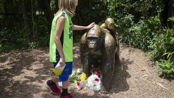 Мальчик у скульптуры гориллы в зоопарке Цинциннати, США. 29 мая 2016