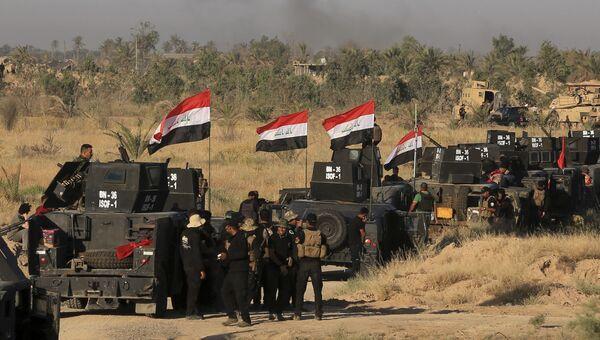 Иракские военные готовятся к наступлению в Фаллудже. Архивное фото