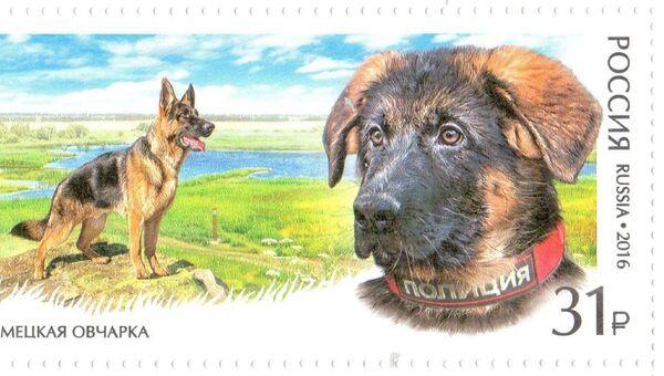 Полицейский пес Добрыня появился на почтовой марке