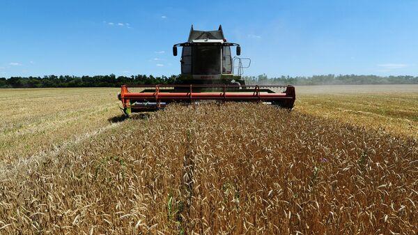 Уборка пшеницы в Ростовской области. Архивное фото